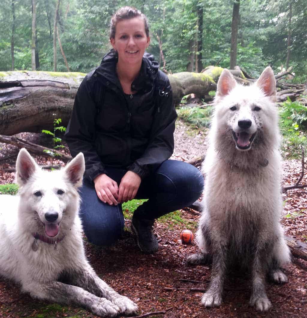 Hondengedragstherapie Utrecht Kim Noordermeer